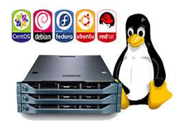 אחסון לינוקס (Linux Hosting)